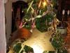 Weihnachtsfeier-2012-49